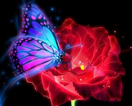 Image result for magic butterflies
