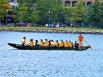Barrie's Dragon boat races (yellow boat)