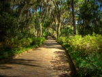 McClay Gardens State Park, Tallahassee, Florida