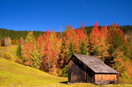 autumn cabin wallpaper desktop - photo #17