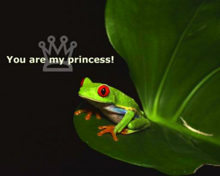 You are my princess - frogs, message, leaf, words