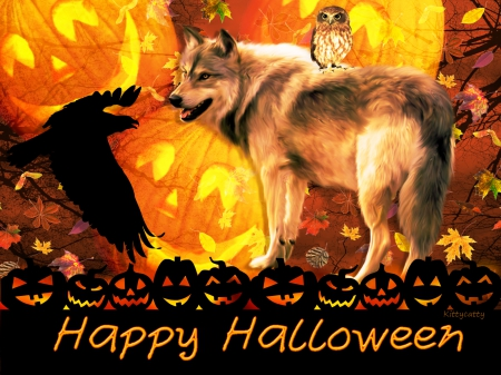 cute halloween wolf dogs animals background wallpapers on desktop nexus image 1586787 - Wolf Halloween