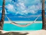 Hammock in the South Pacific Islands