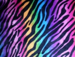 Colored Animal Print