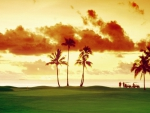 Golf Sunset Fiji