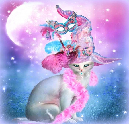 ��cat in fancy witch hat�� cats amp animals background