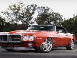 Firebird Muscle