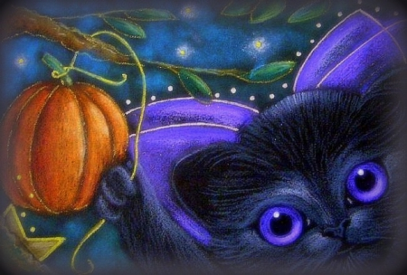Kitten Fairy Halloween - Cats & Animals Background ...