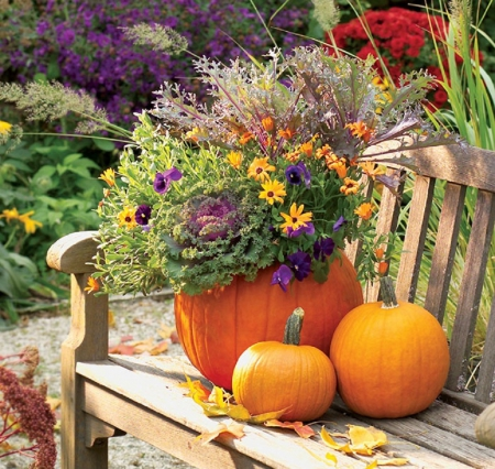 Thanksgiving Garden Decor Other Nature Background Wallpapers On Desktop Nexus Image 1608491