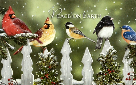 Peace on Earth F2Cmp - Birds & Animals Background Wallpapers on ...
