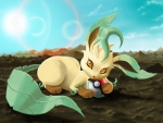 Leafeon chewing Pokeball