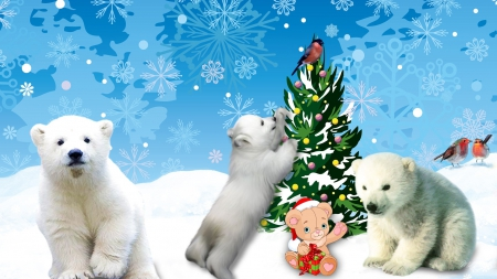 Polar Bears Christmas - Winter & Nature Background Wallpapers on ...