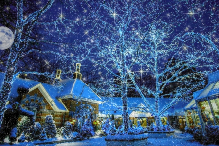 HDR Christmas Lights - Winter & Nature Background Wallpapers on ...