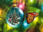 Butterfly Christmas