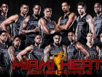 Miami Heat NBA Champions