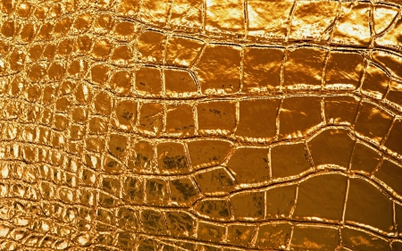 Snake Skin Textures Amp Abstract Background Wallpapers On