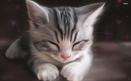 Anime cat - kitten, cats, cat, cute, kittens, cute kittens, kitty, anime