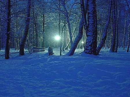 blue winter night winter amp nature background wallpapers