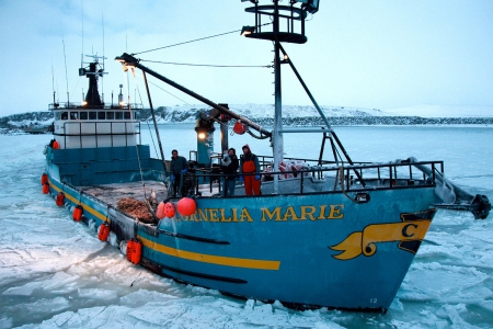 Cornelia marie deadliest catch crab boat quota for Crab fishing boat