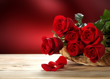 with love  flowers  nature background wallpapers on desktop, Beautiful flower