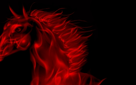 Neon Horse - Photography & Abstract Background Wallpapers ...