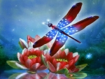 ✫Brilliant Dragonfly on Valentines✫