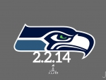 Seattle Seahawks Super Bowl 2014