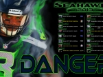 2013 Seattle Seahawks