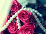 Pearls of roses