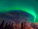 northern lights in starry sky at twilights
