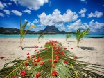 Bora Bora Island Beach Wedding