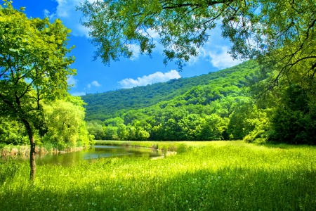 pretty sky green landscape grass nature background wallpapers on desktop
