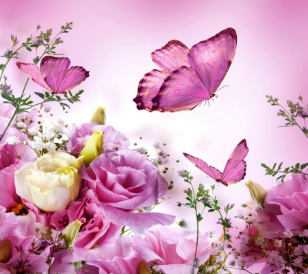 flowers and butterflies  flowers  nature background wallpapers, Beautiful flower