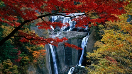 Stunning Waterfalls - green, streams, waterfalls, forces of nature, rocks, yellow, plants, monutain, white, nature, red