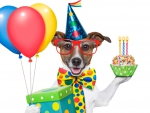 Cheerful Birthday Dog
