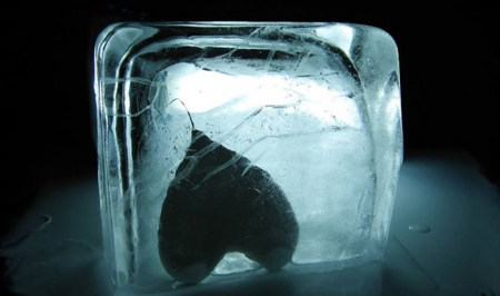 Frozen Heart By... - Photography & Abstract Background ...