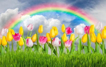beautiful spring desktop wallpaper rainbow - photo #11