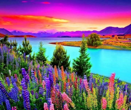 Beautiful Colors Of Nature Flowers Nature Background