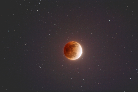 The Blood Moon in the Night Sky - Moon, Time, Blood, Night