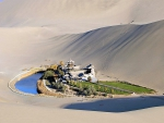 Oasis in Middle of Gobi Desert