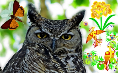 Grand Master - outdoor, bird, owl, nature