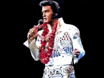 legend elvis movie singer actor