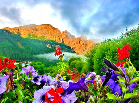 Mountian Flowers - greenary, splendor, flowers, morning, lovely flowers, colorful, sky, paradise, clouds, dolomites, nature, mountains