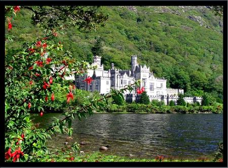 Irish Castle - lake, flowering tree, mountain, ireland, castle
