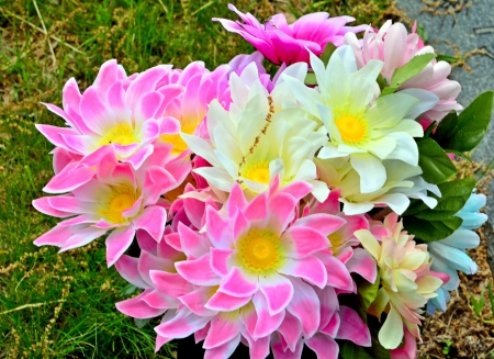 Pretty Flowers - white flowers, pink flowers, beautiful flowers, yellow flowers, Pretty Flowers