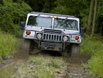 HUMMER H1 IN JUNGLE