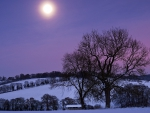 a hazy moon over winter landscape