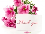 thank you with flowers