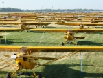 piper cub aviation club