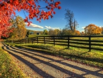 Autumn Morning On The Farm